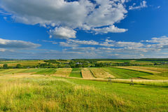 Sommerfelder Lizenzfreie Stockfotos