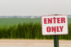 Sommerfeuchtigkeits-Ackerland und ein Zeichen Stockbild