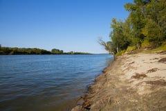 Sommerflußufer im Wald Lizenzfreies Stockfoto