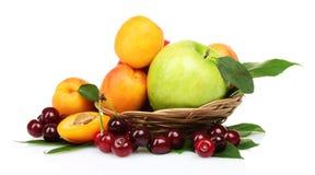 Sommerfrüchte Stockbild