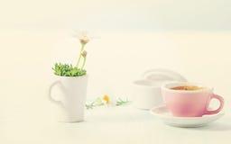 Sommerfrühstück lizenzfreie stockfotos