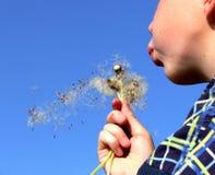 Sommerfreiheit Stockfotografie