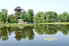Sommergarten Lizenzfreies Stockfoto
