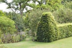 Sommergarten mit Gehweg zwischen Blumen und grüner Hecke stockfotos