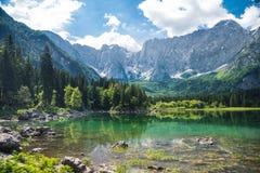 Sommergebirgssee lizenzfreie stockfotos