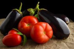 Sommergemüse: frische saftige rote Tomaten und Auberginen Stockbilder
