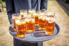 11 Sommergetränke in den Gläsern auf einem Behälter stockfotos