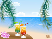 Sommergetränke Lizenzfreie Stockbilder