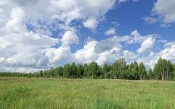 Sommergrünfeld unter dem blauen Himmel mit schönen Wolken auf dem Waldhintergrund Lizenzfreie Stockfotos