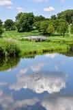 Sommerhimmel und -bäume reflektierten sich im Seewasser Stockbild