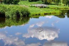 Sommerhimmel und -bäume reflektierten sich im Seewasser Lizenzfreie Stockbilder