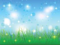 Sommerhimmel und -wiese mit Gras Stockbild