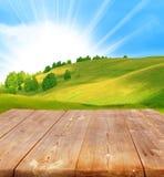 Sommerhintergrund Lizenzfreies Stockfoto