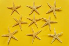 Sommerhintergrund des gelben Papiers mit Starfish, Symbolisierung Stockbilder