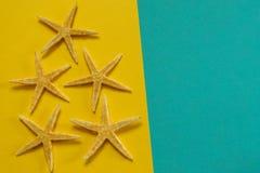 Sommerhintergrund des gelben und blauen Papiers mit Starfish, Symbol Stockfotografie