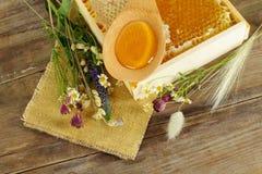 Sommerhintergrund - Honig und Blumen lizenzfreies stockfoto