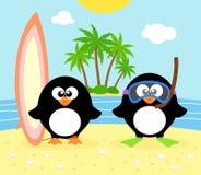 Sommerhintergrund mit Pinguin Stockbilder