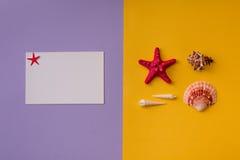 Sommerhintergrund von zwei Farben Stockfotos