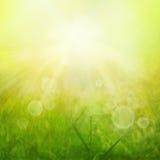 Sommerhitze Stockbild