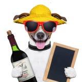 Sommerhund und Weinflasche lizenzfreie stockfotos