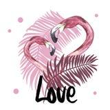 Sommerillustration mit Flamingo Tropischer Vogel Sommer-Design-Vektor T-Shirt Mode-Grafik Hand gezeichnetes Wort - Liebe vektor abbildung