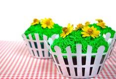 Sommerkleine kuchen auf Gingham Lizenzfreie Stockfotografie