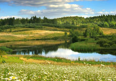 Sommerlandschaft Stockfotografie