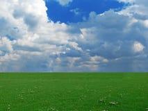 Sommerlandschaft Stockfotos