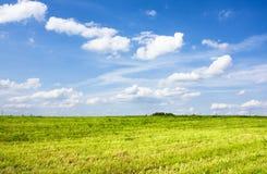 Sommerlandschaft Lizenzfreie Stockfotografie