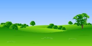 Sommerlandschaft Stockbild