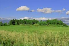 Sommerlandschaft Stockfoto