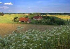 Sommerlandschaft lizenzfreie stockfotos