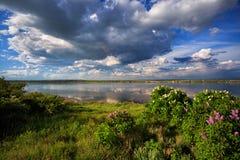 Sommerlandschaft auf dem Fluss stockfotografie