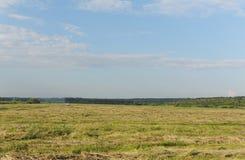 Sommerlandschaft auf dem Gebiet Das Auto geht weit auf dem Gebiet Blauer Himmel in den Wolken Stockbild