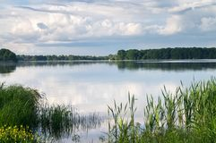 Sommerlandschaft auf dem See Biserovo, Moskau-Region, Russland lizenzfreies stockbild