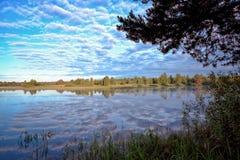 Sommerlandschaft in dem Fluss Lizenzfreies Stockbild