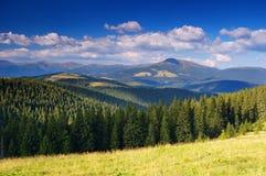 Sommerlandschaft in den Bergen ein sonnigen Tag Lizenzfreies Stockbild