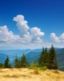Sommerlandschaft in den Bergen ein sonnigen Tag Lizenzfreie Stockbilder