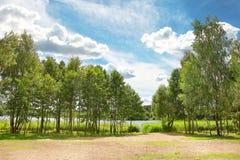 Sommerlandschaft der grünen Natur am hellen sonnigen Tag Blauer Himmel mit Wolken über Bäumen auf See Stockfotografie
