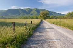 Funken-Weg, Great Smoky Mountains Lizenzfreie Stockfotos