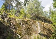 Sommerlandschaft - ein Felsen mit wachsenden Kiefern an einem sonnigen Tag Stockfotografie