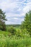 Sommerlandschaft im Floodplain des Flusses Vetluga Lizenzfreies Stockfoto