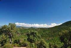 Sommerlandschaft im Süden von Frankreich Stockfoto