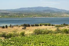 Sommerlandschaft in Languedoc-Roussillon (Frankreich) Lizenzfreie Stockfotos