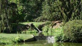 Sommerlandschaft mit dem Bach, der unter Baumpark fließt stock footage