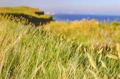Sommerlandschaft mit dem Rollen von grünen Hügeln, Ukraine Stockbilder