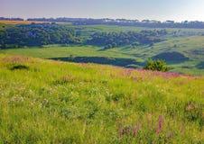 Sommerlandschaft mit dem Rollen von grünen Hügeln, Ukraine Stockbild