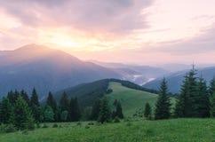 Sommerlandschaft mit dem Sonnenuntergang in den Bergen Stockfotografie