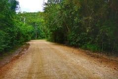 Sommerlandschaft mit einer leeren sandigen Straße im Wald lizenzfreies stockbild