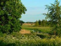Sommerlandschaft mit Fluss und Bäumen Stockfotos